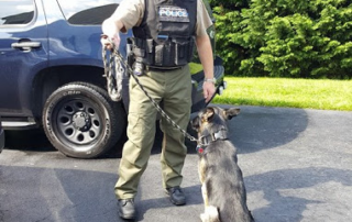 Off-duty police officer with dog
